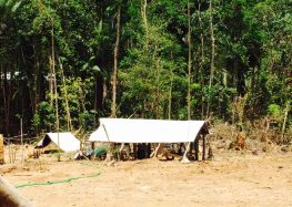 Quadrilha de brasileiros promove onda de assaltos em vários garimpos do Suriname