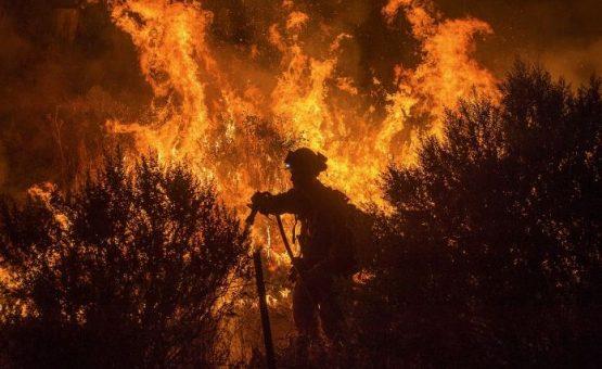 Chega ao fim incêndio que destruiu 220 mil hectares de área de preservação no MA