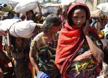 FAO diz que 23 milhões precisam de ajuda no sul da África