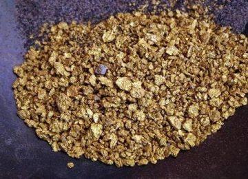 Dois brasileiros foram presos acusados de terem roubado 900 gramas de ouro no garimpo