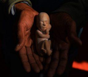 DF aprova lei para mostrar imagens de feto a vítimas de estupro