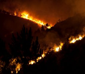Mais de 1,5 mil são removidas por incêndio florestal na Espanha