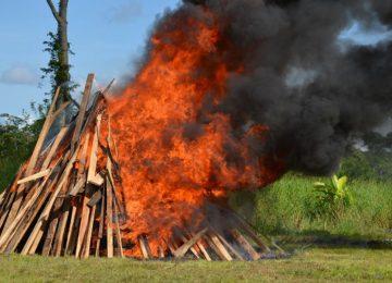 1.751 Kgs de cocaína apreendida no porto de Paramaribo foi incinerada pela polícia