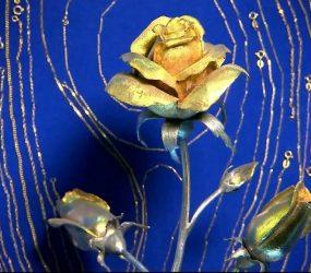 Santuário de Aparecida recebe rosa de ouro enviada pelo Papa Francisco