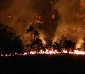 Incêndios florestais na Califórnia destruíram fazendas de maconha recreativa