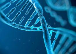 Pesquisa identifica 27 genes que podem prevenir alguns tumores