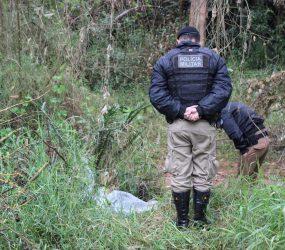 Corpo de jovem desaparecida após dar carona combinada por WhatsApp é encontrado