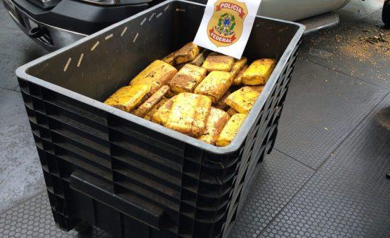 PF prende brasileiro suspeito de enviar cocaína em cargas de farinha à Europa