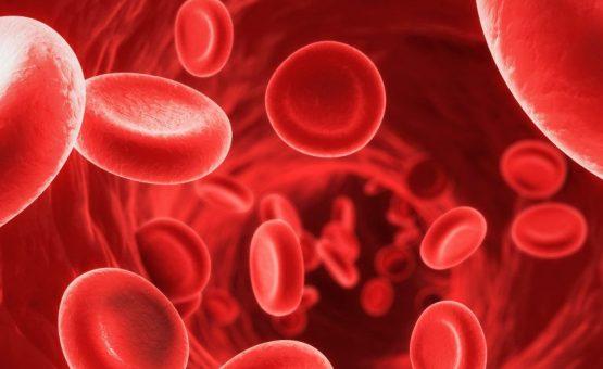Anemia: o que é, tipos, sintomas e tratamentos