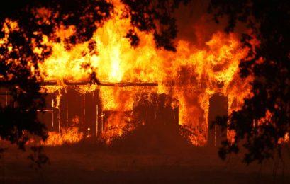 Incêndio mais letal da história da Califórnia deixa mais de 40 mortos; Veja números