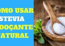Stevia: o que é, benefícios do adoçante e como usar