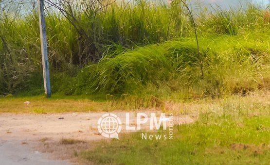 Terras não gerenciadas e aparentemente abandonadas serão restituídas ao seio do Estado do Suriname