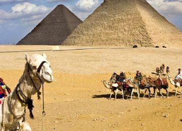 Egito vai construir nova capital até 2019. Enquanto isso, o BRT em Belém…