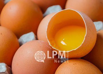 Preço do ovo de galinha é fixado em SRD 1,60 para o período de baixa produção