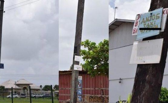 EBS: Material publicitário é proibido em postes de energia elétrica