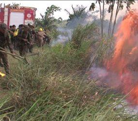 Território indígena Areões tem pico de queimadas mesmo depois de ação do Ibama e da PF contra fogo