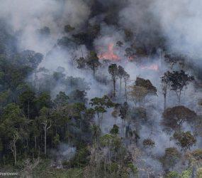 Fumaça de queimadas na Amazônia e em países vizinhos chega aos céus do Sul e do Sudeste do Brasil